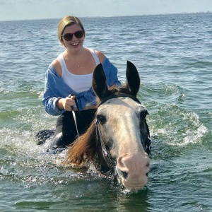 Beach horseback rides on St Petesrburges sea horses