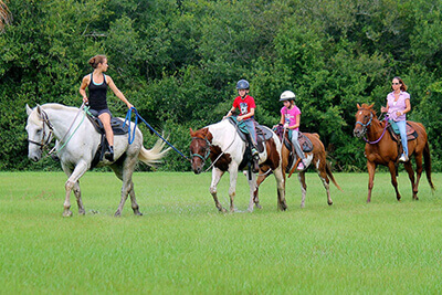 Guided Trail Rides