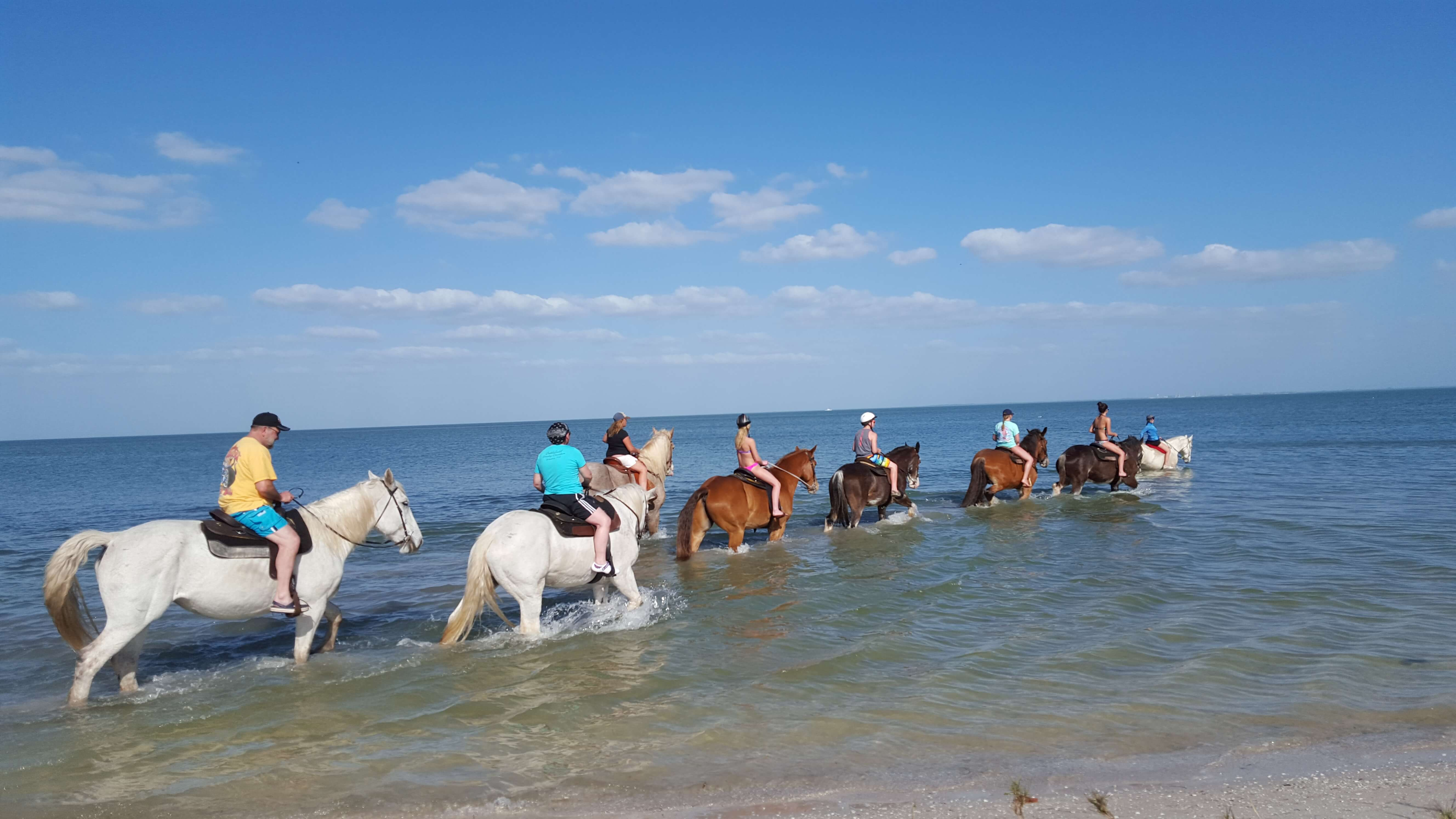 Horseback Riding Is Great For The Family Florida Beach Rides